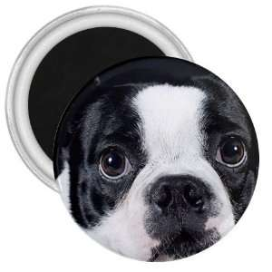 boston terrier 12 2 3in Magnet S0667