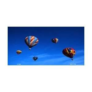 Air Balloons License Plate Tags  Full Color Photography Automotive