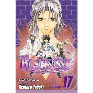 Black Cat, Vol. 17 (Black Cat (Viz)) [Paperback] Kentaro